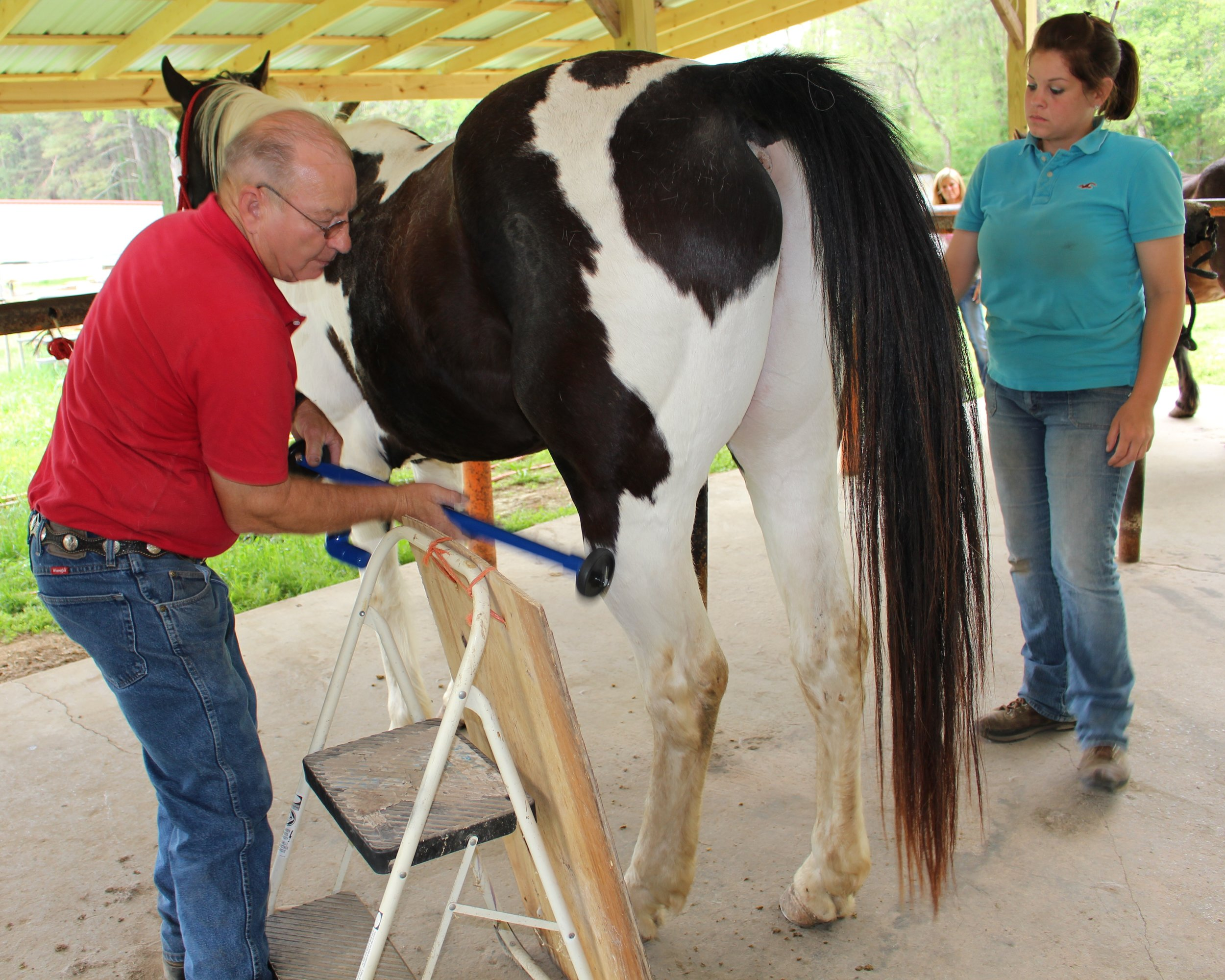 Dan Marcum EFT Instructor with Ashle Eidiener, Farrier, demontrating his patented D-Stressor Tools for Horses.