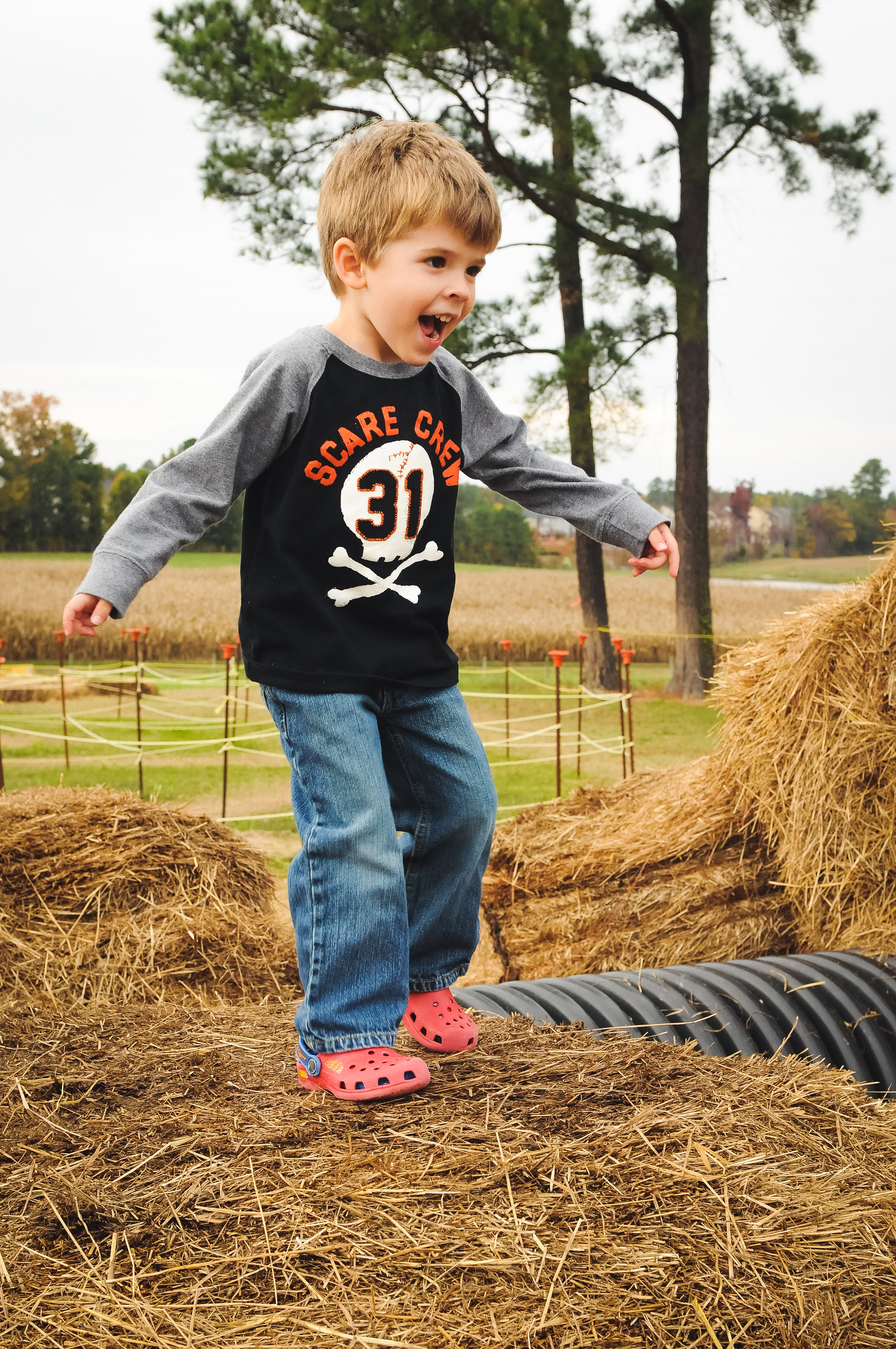 fall-family-photography-sessions-cary-2.jpg