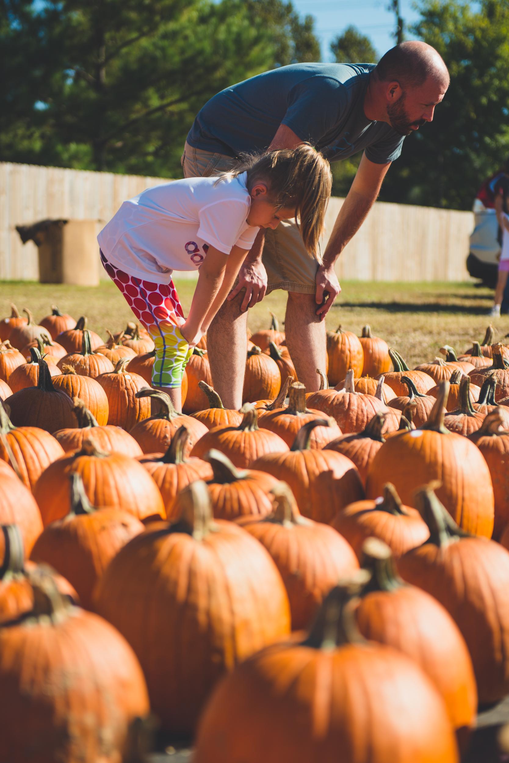fall_pumpkin_patch_family_portrait_raleigh-7.jpg