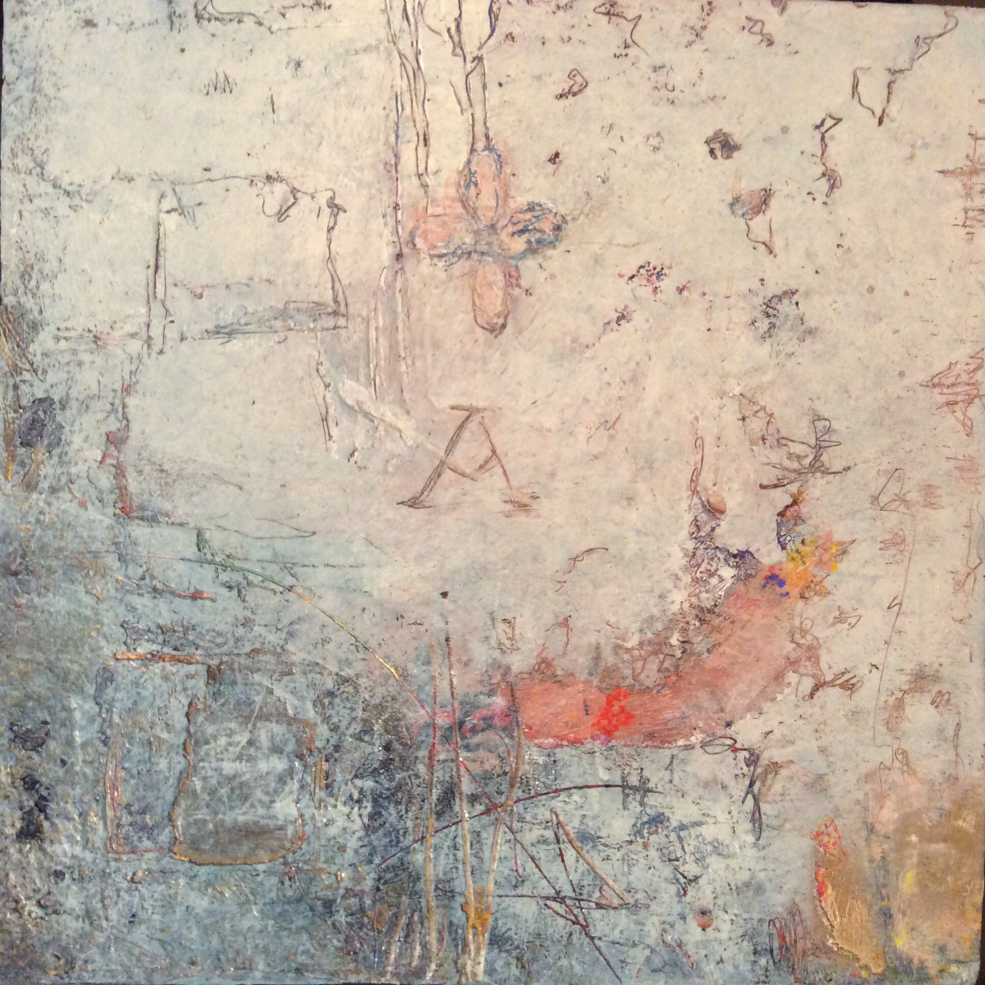 Lisa Lipsett
