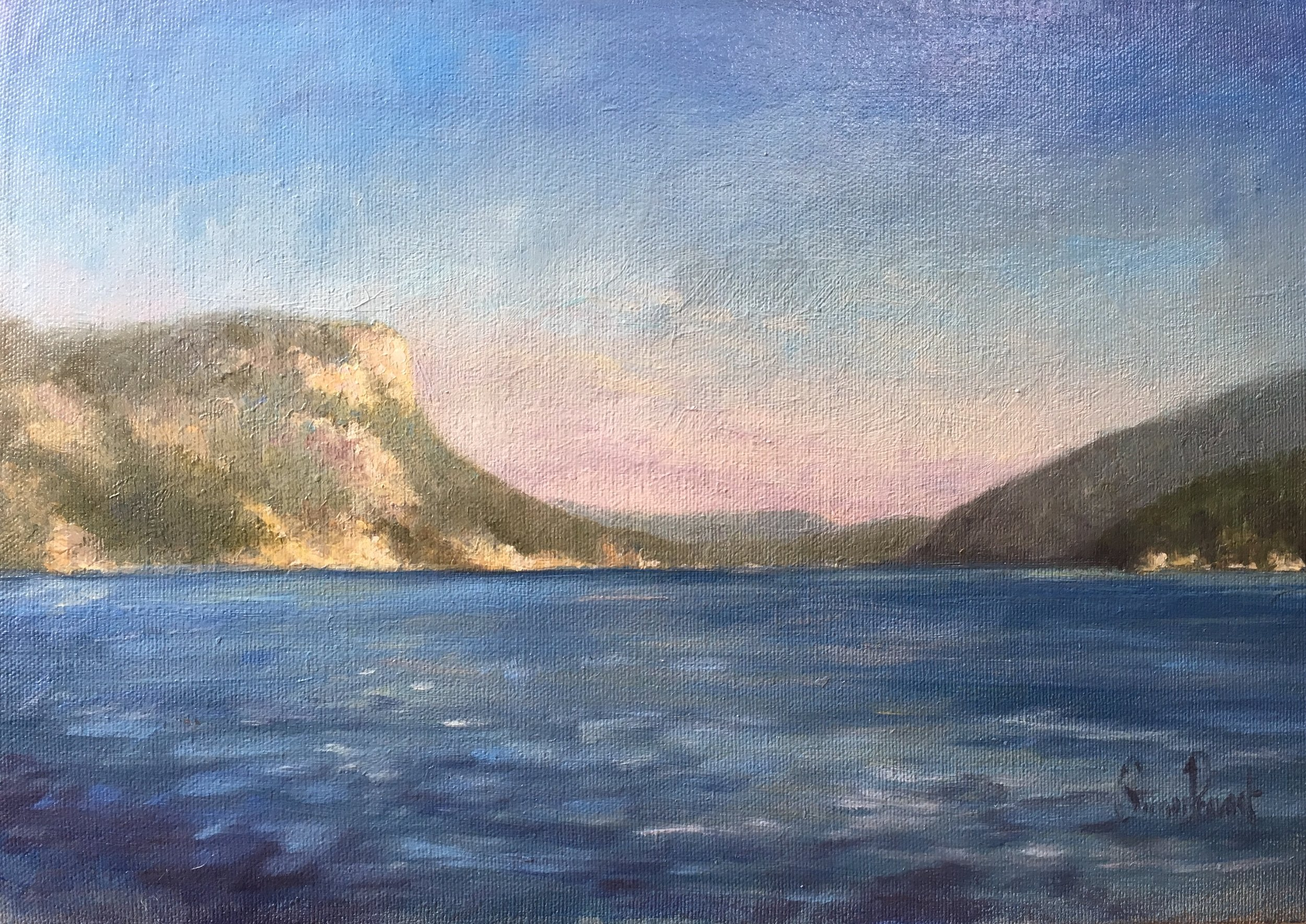 "SIMON PROVOST Mt Maxwell & Burgoyne Bay, oil, 9""x14"" , $250"