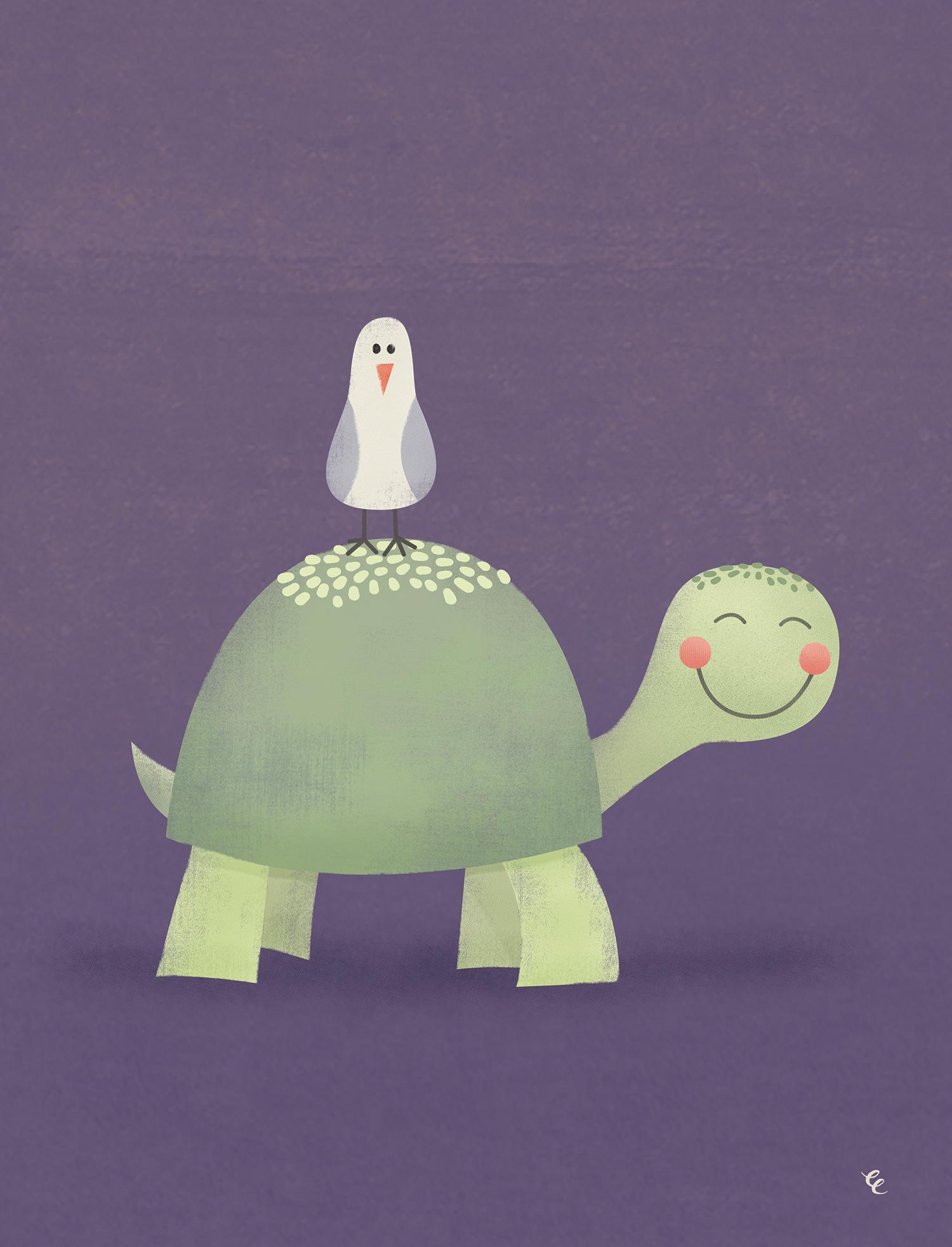 WEEK 9:  a Friendly Turtle