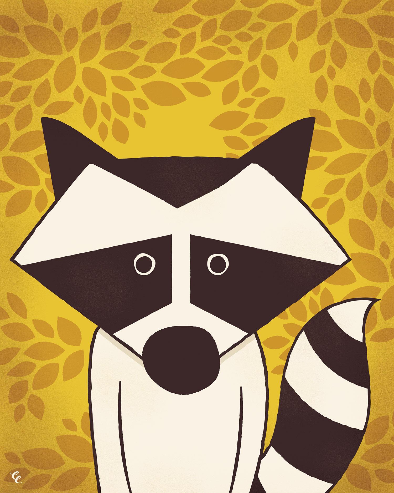WEEK 46:  Raccoon