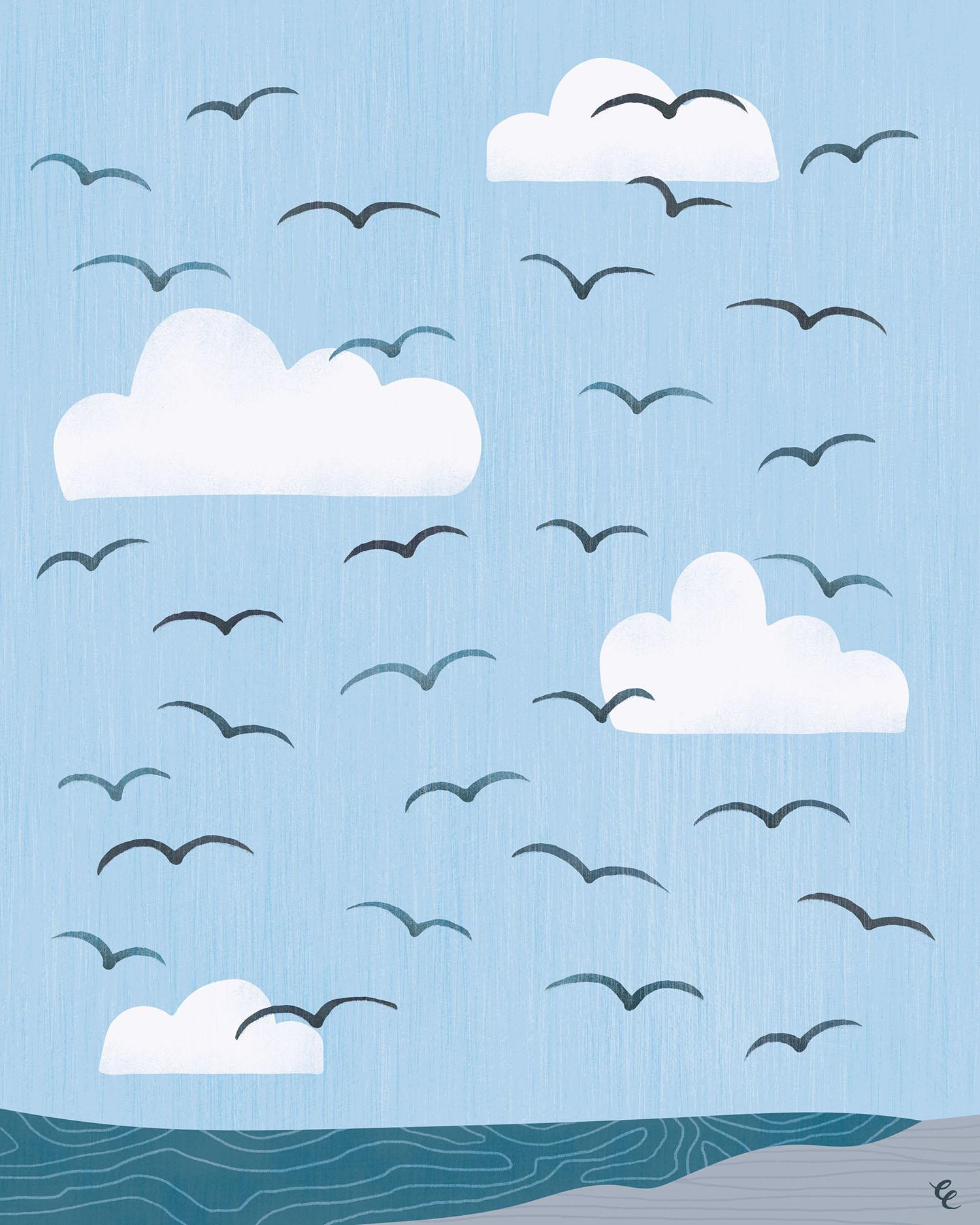 WEEK 52: Flying Gulls