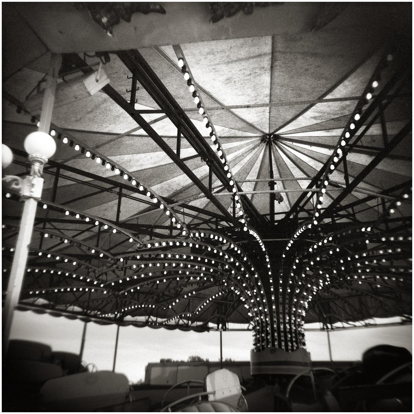 Canopy 16x16 toned.jpg