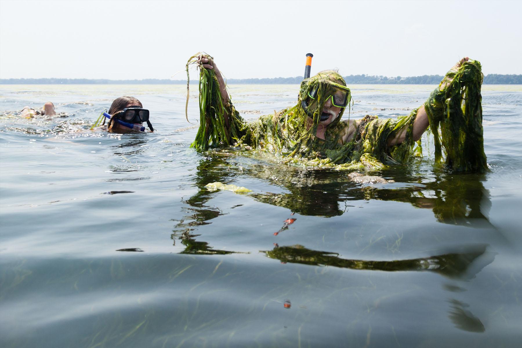 Image by Chesapeake Bay Program.