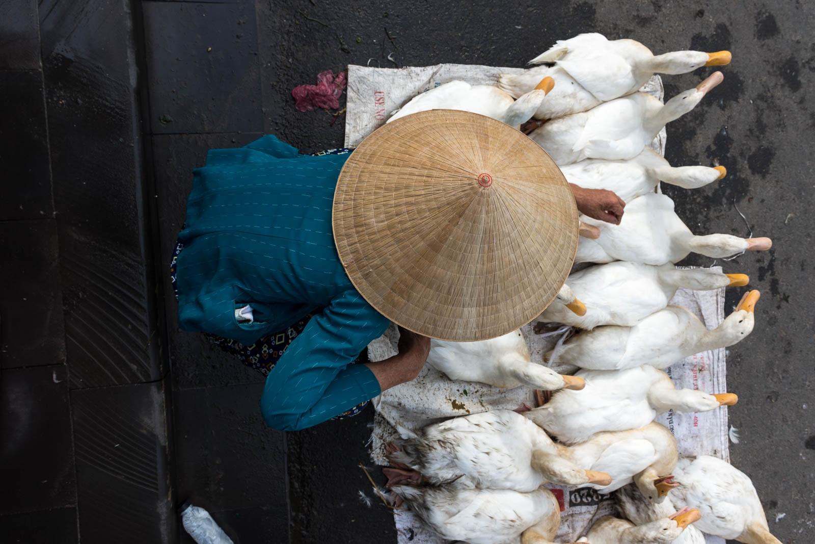 Central Market, Hoi An, Vietnam