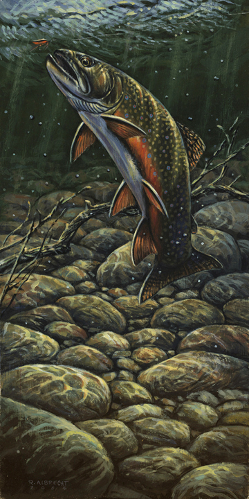 rainbow trout 8x16 New.jpg