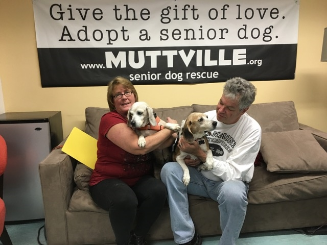 Muttville Volunteers / Photo Courtesy Sherri Franklin