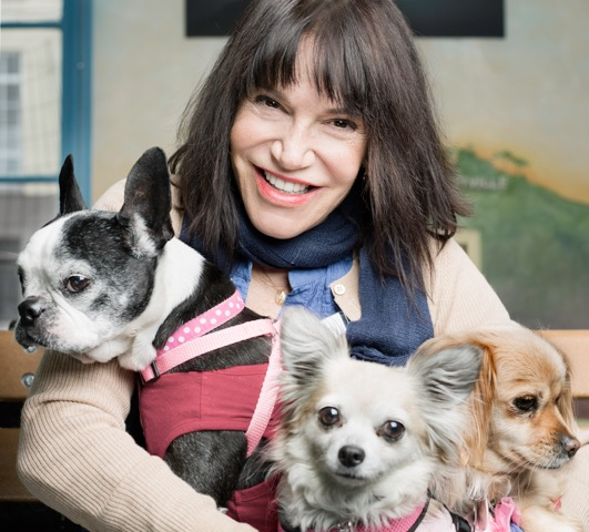 sherri franklin, founder of muttville senior dog rescue
