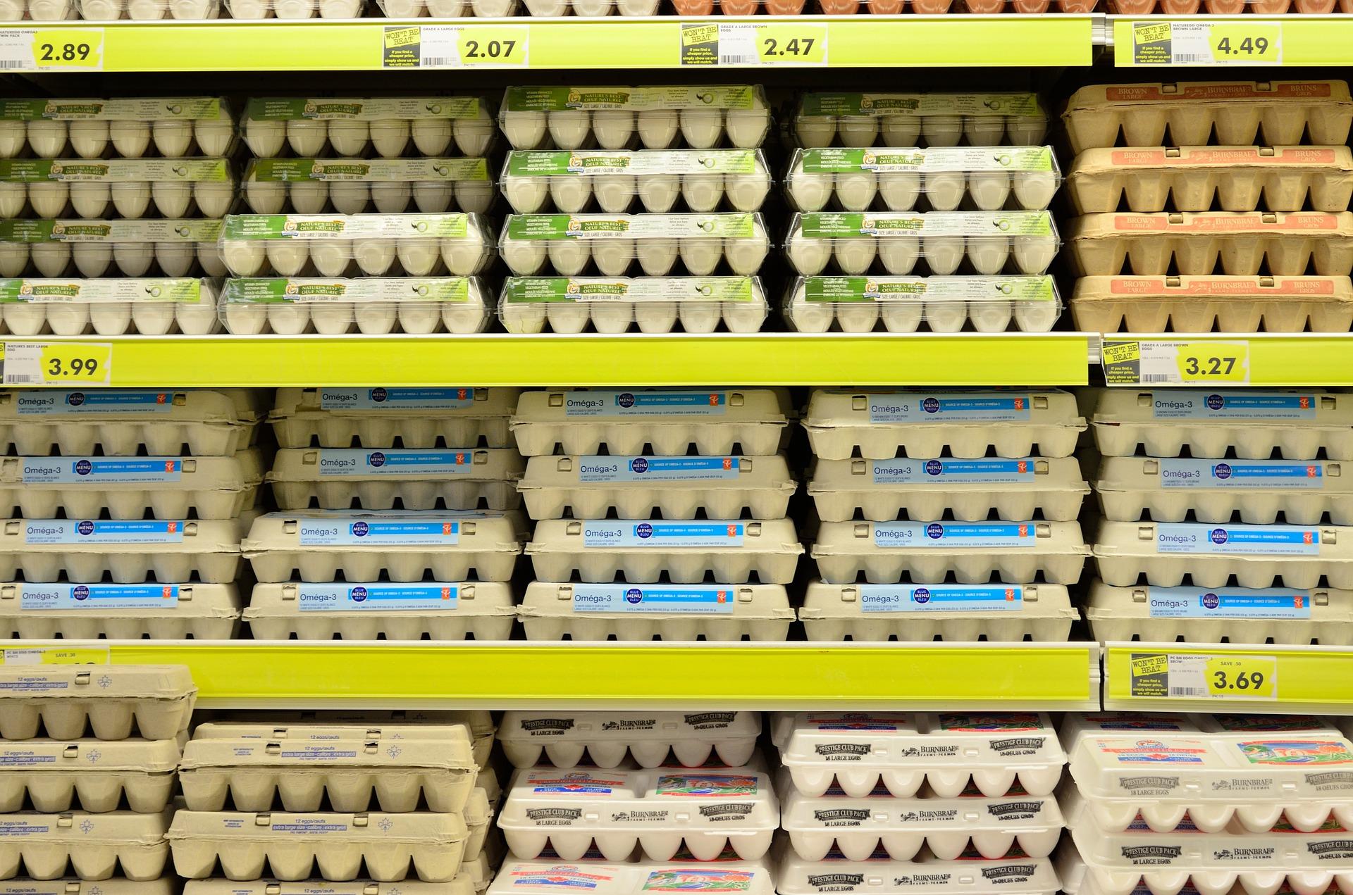 egg-1316407_1920.jpg