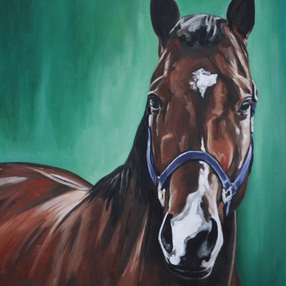 Brooke O'Connell ~Equine Artist www.brookeoconnell.com