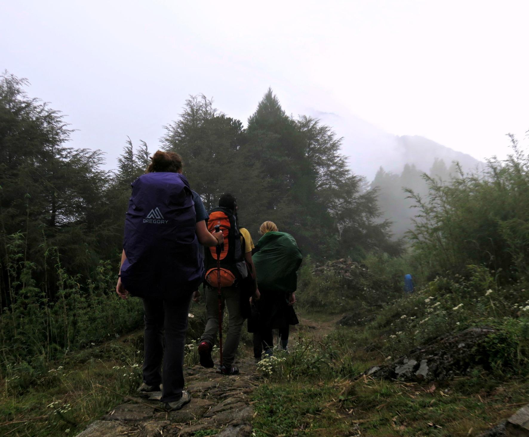 Trekking through the Himalayan Mountains in India.