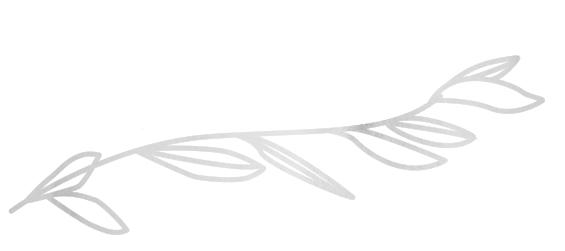 branchillustration.jpg