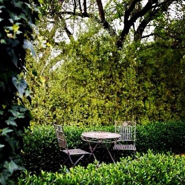 Sometimes is nice just to sit a while.  The @inverleighcellarkitchen gardens are a perfect place to do that with a wine in hand. Open tomorrow from 12pm  #inverleigh #inverleighcellarkitchen #lunchtime #eat3321 #secretgardens
