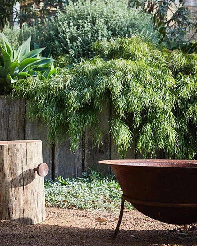 Although the day temps in Byron are well and truly warming up, the nights are still cool and perfect for a gathering around the fire pit. This one is from our Coledale project. Pic by @nataliehunfalvay Plants from @exotic_nurseries