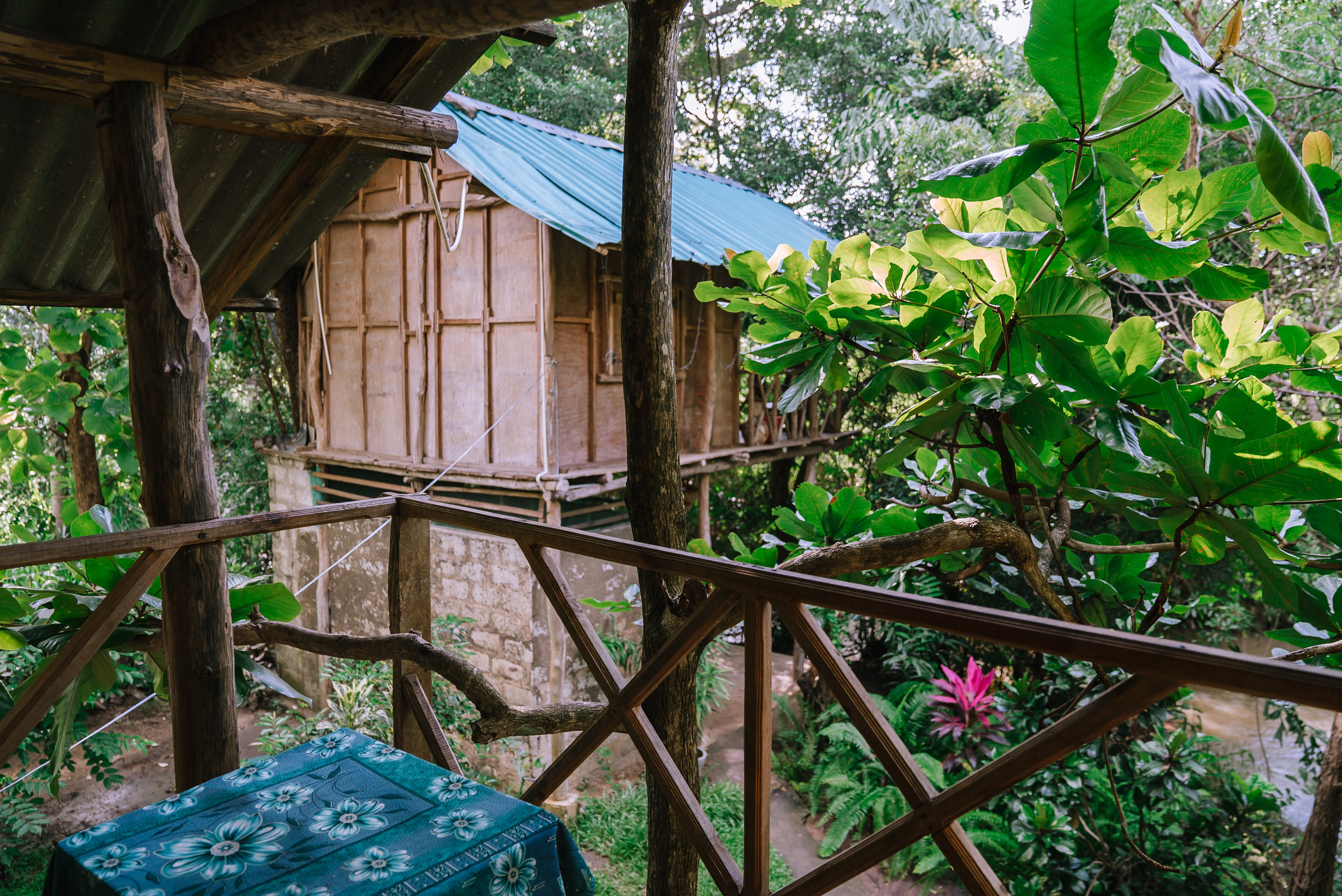 Tree House in Sigiriya