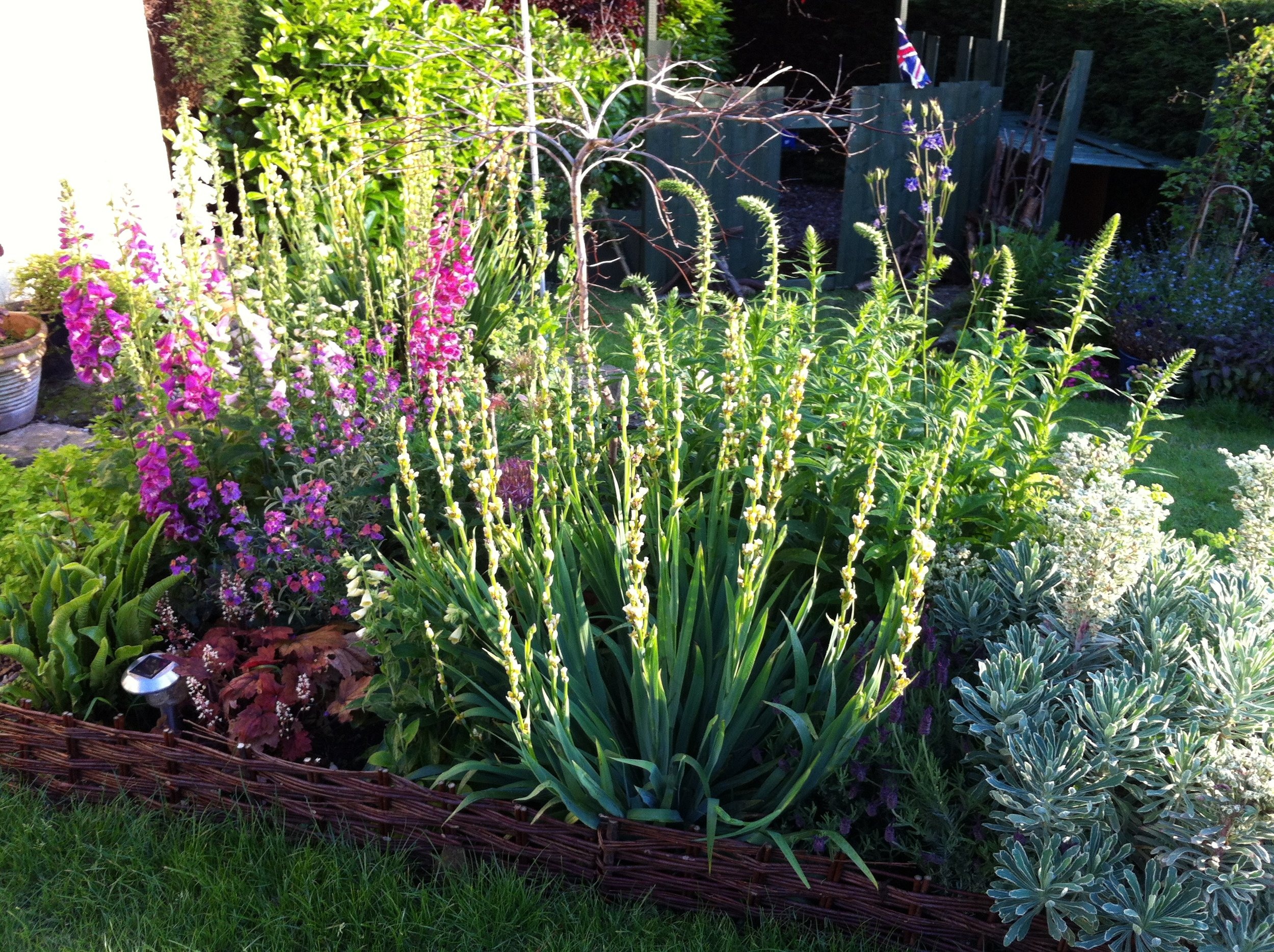 Inspiration from the garden….