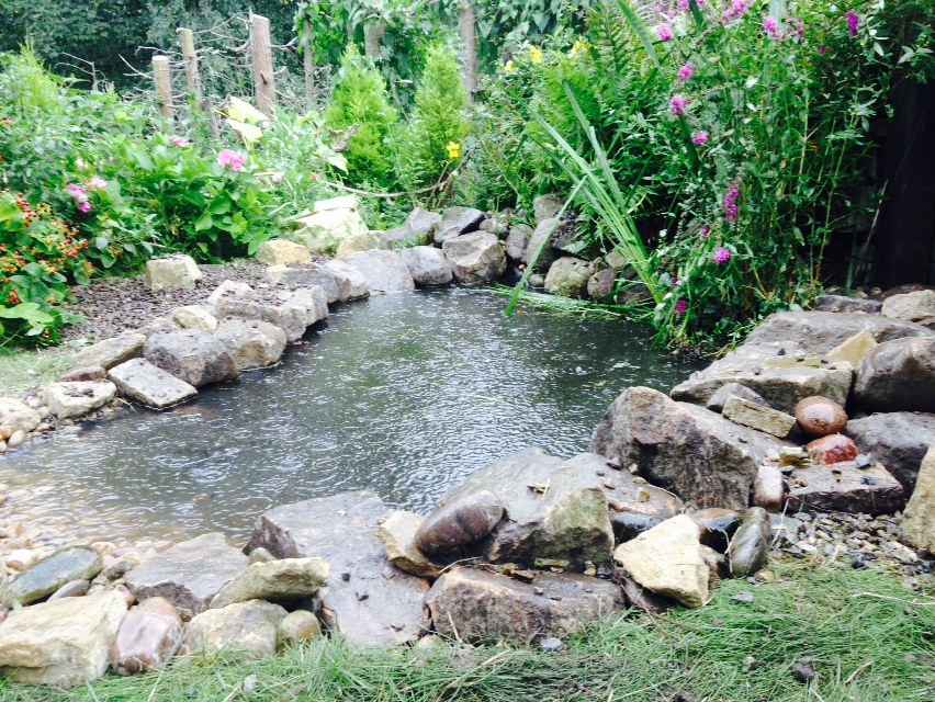 chris rivers ponds and water features design york5.jpg