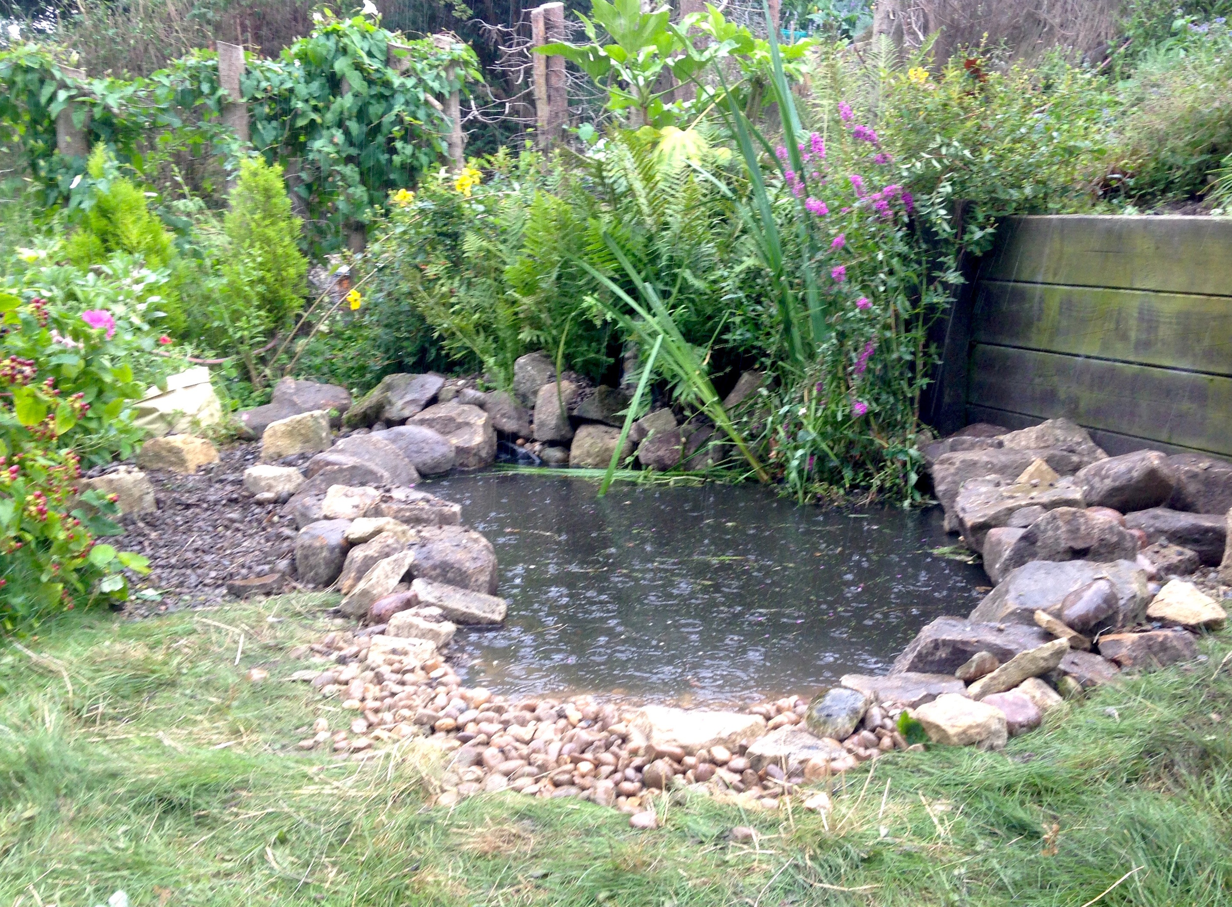 chris rivers ponds and water features design york 3.jpg
