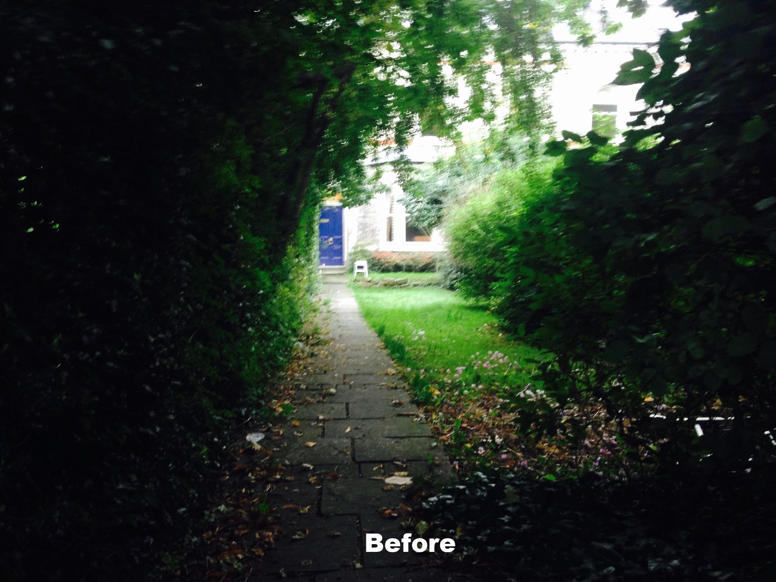IMG_3828chris_rivers_garden_design_York.jpg