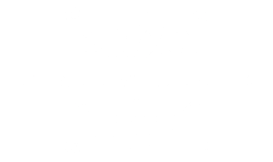 Dixie Willard Design Anderson Blount Knox Loudon Roan Tennessee