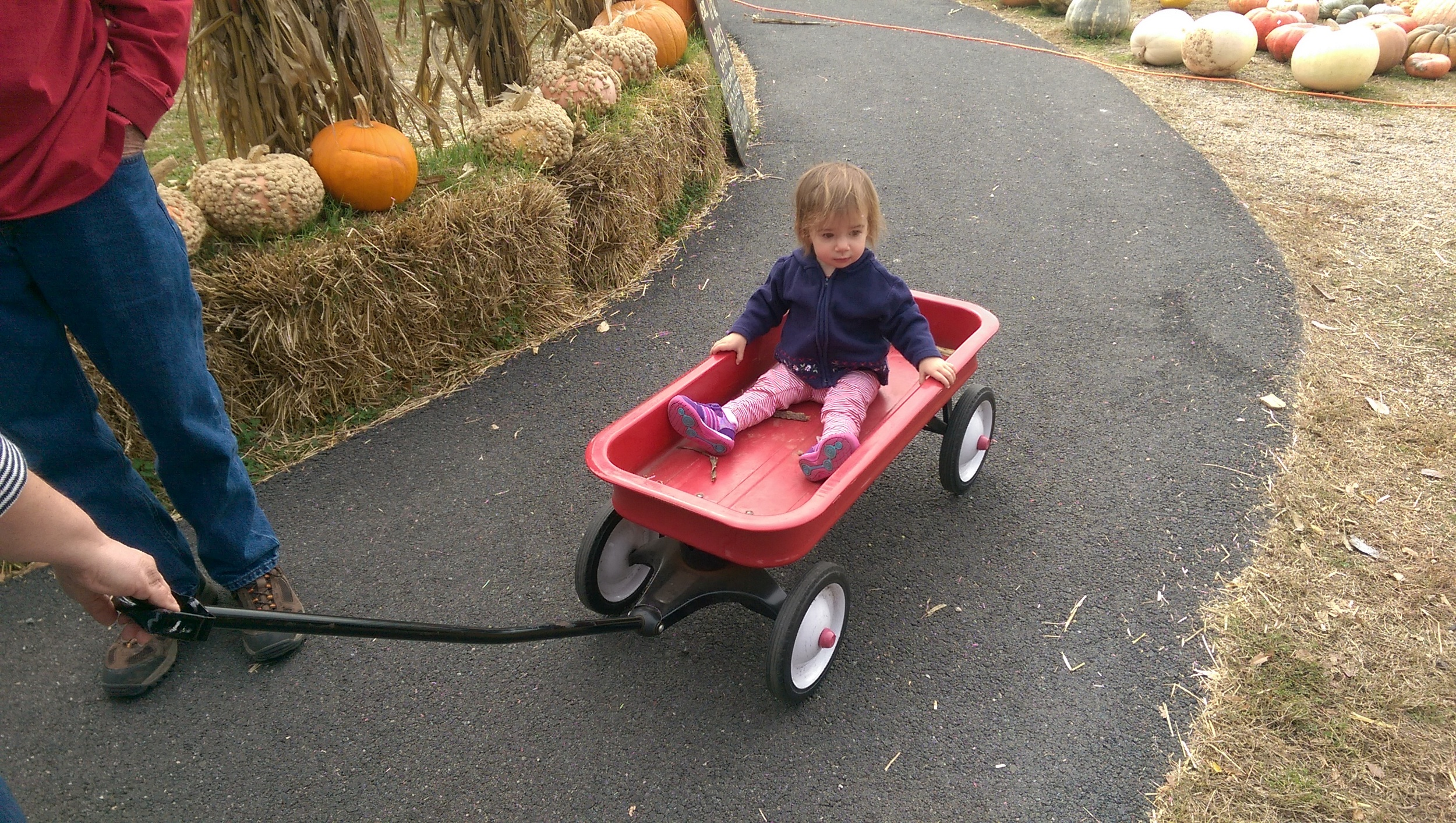 Aunt Carrie pulling Cece in a Radio Flyer