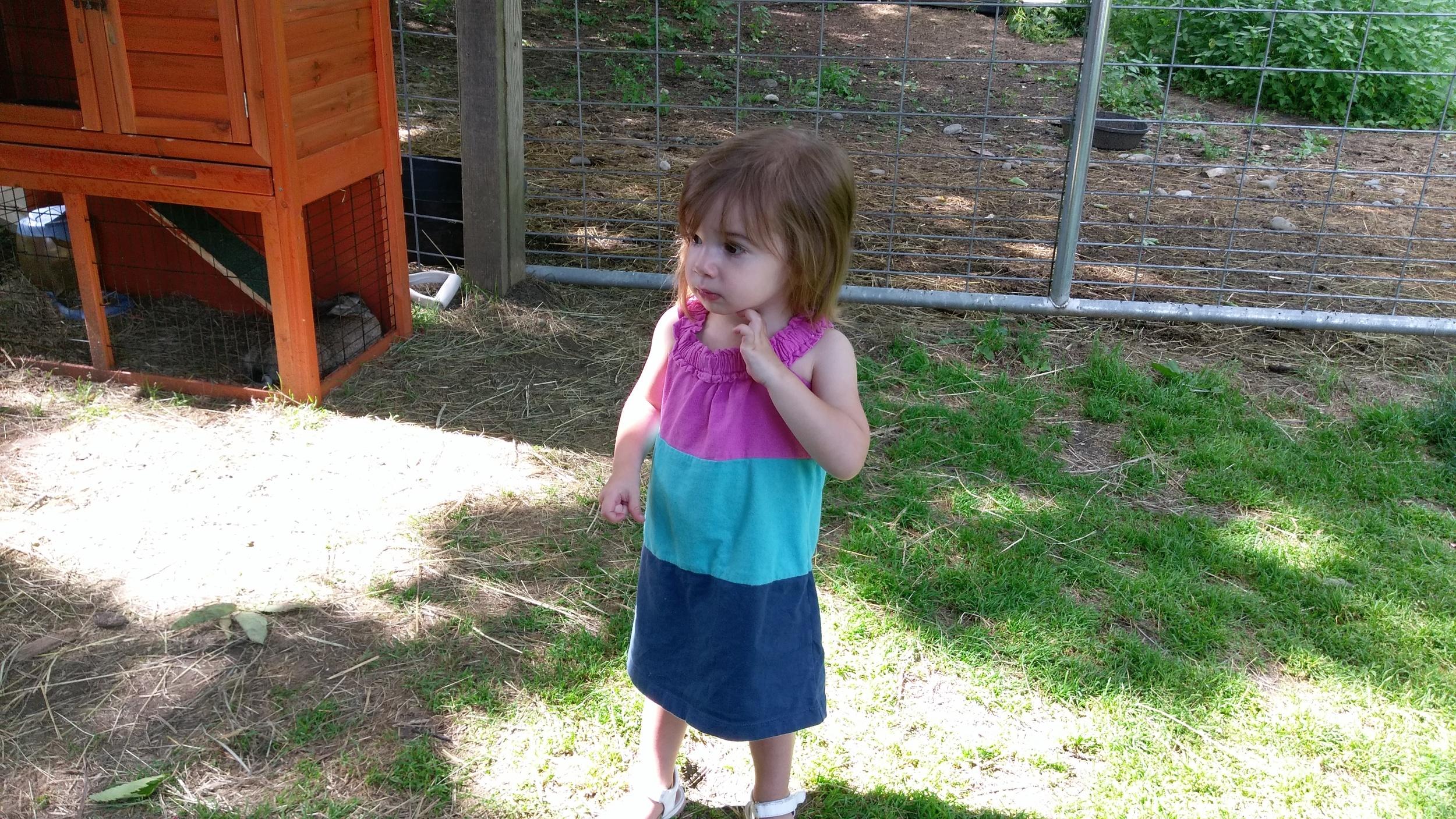 Cece on the farm