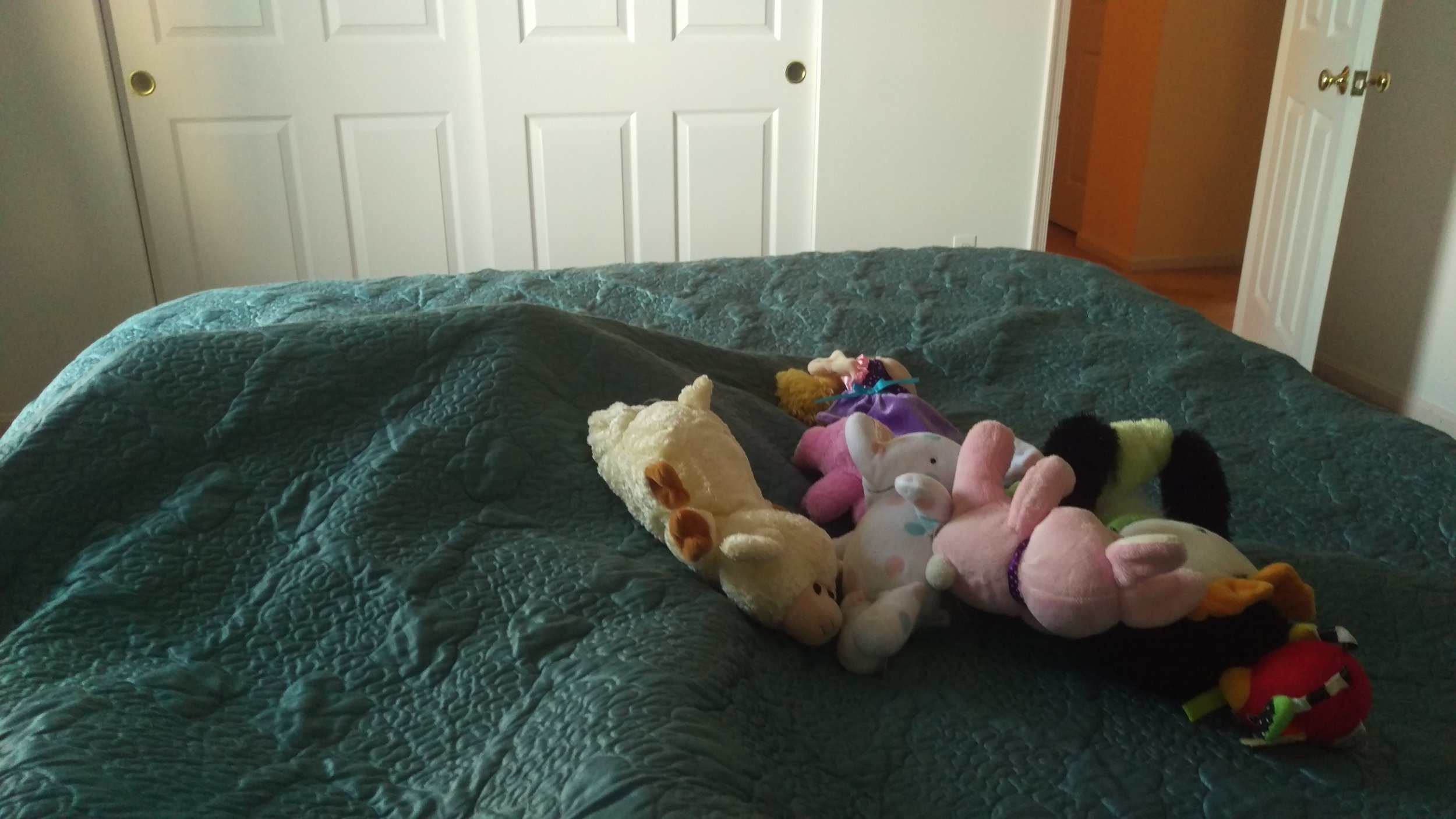 Since I was sick Cece made me stay in bed while she brought me toys