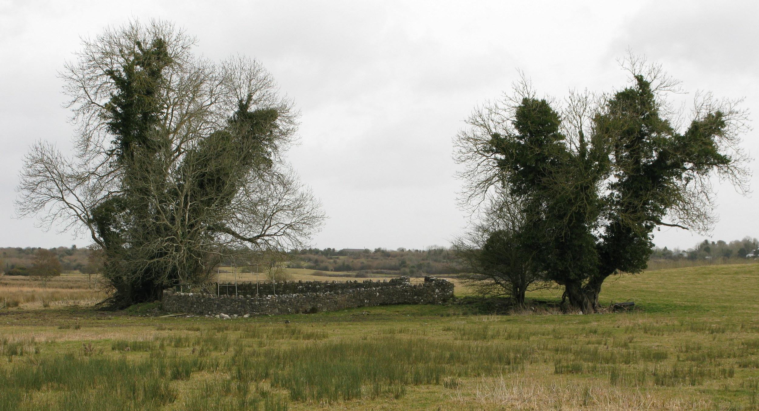 10. St. Johms Well, County Roscommon. Indhegnet på en mark. Næsten udtørret.