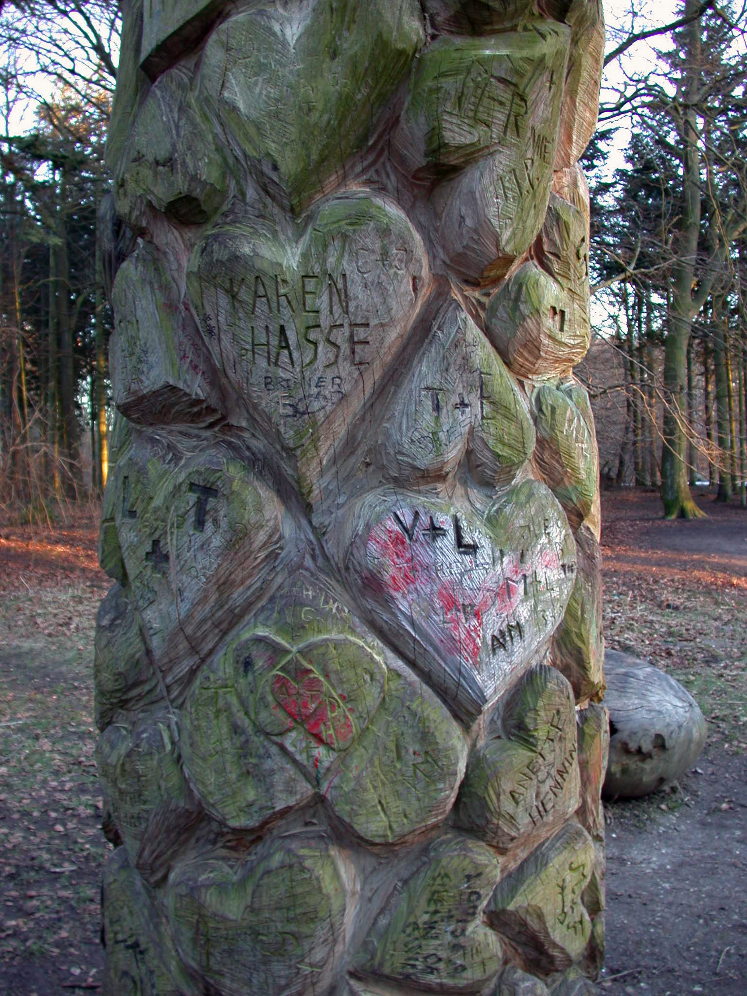 Hjertetræ10B.jpg
