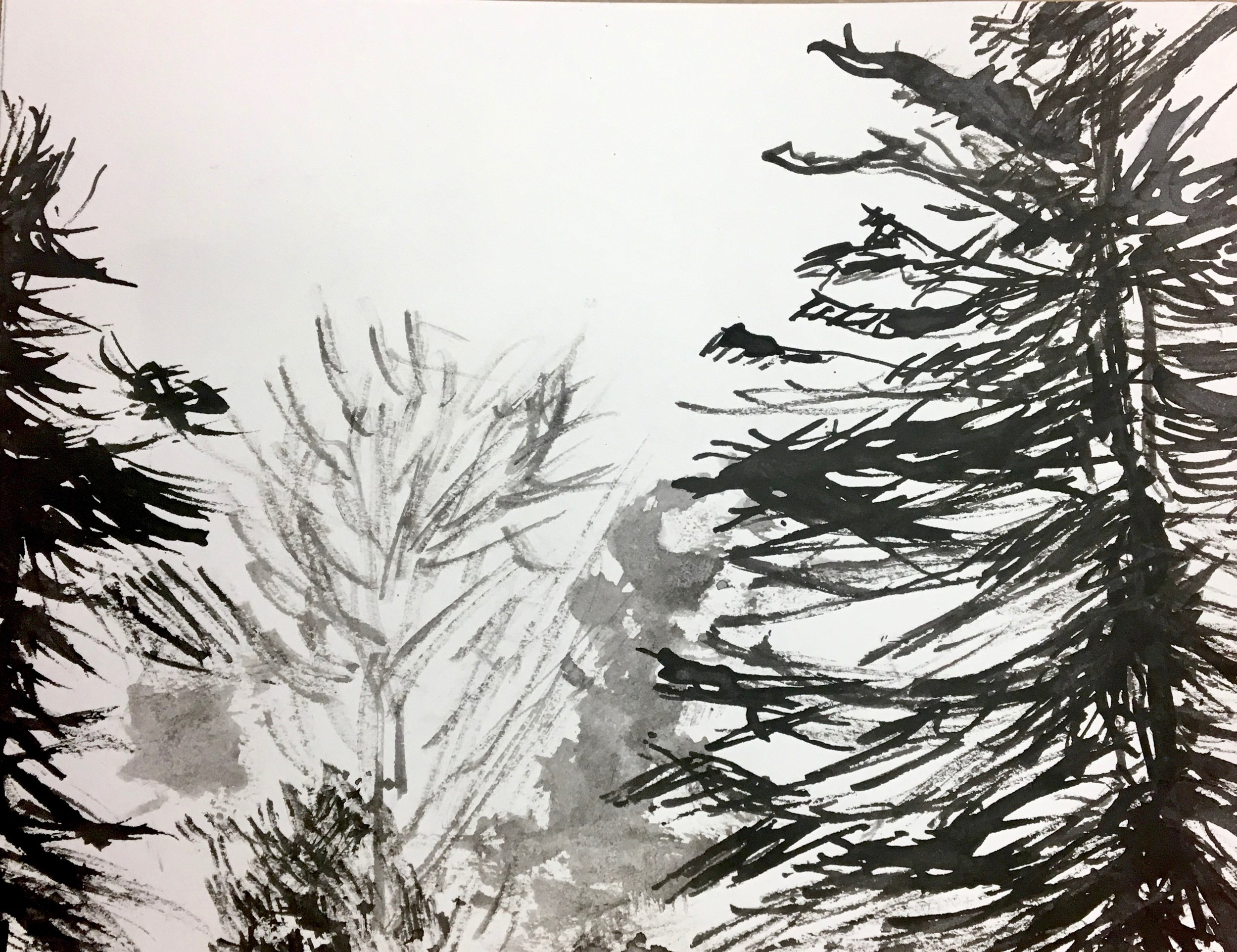 Ink drawing with sticks 5x7, 2018