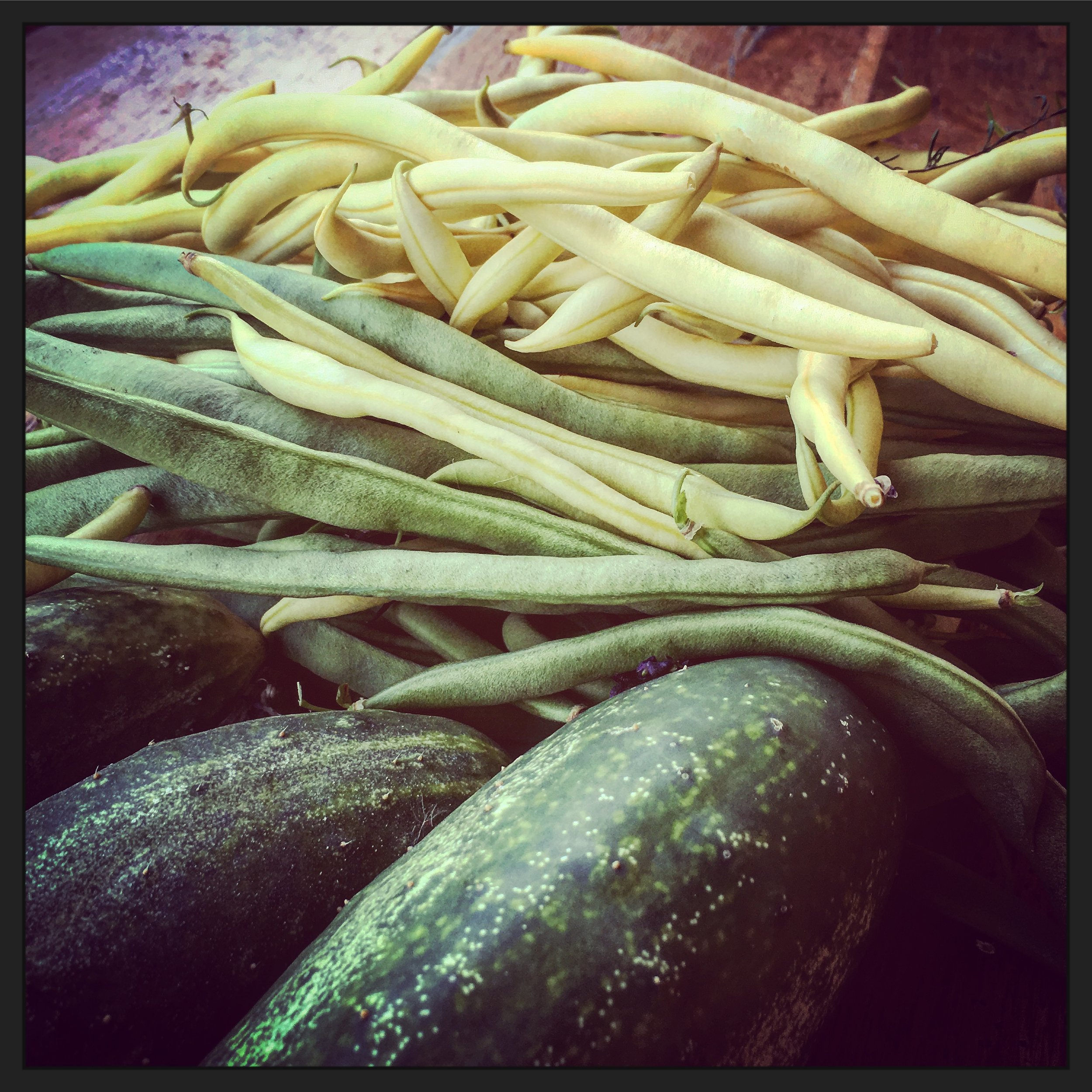 Green beans, yellow beans, cucumbers...