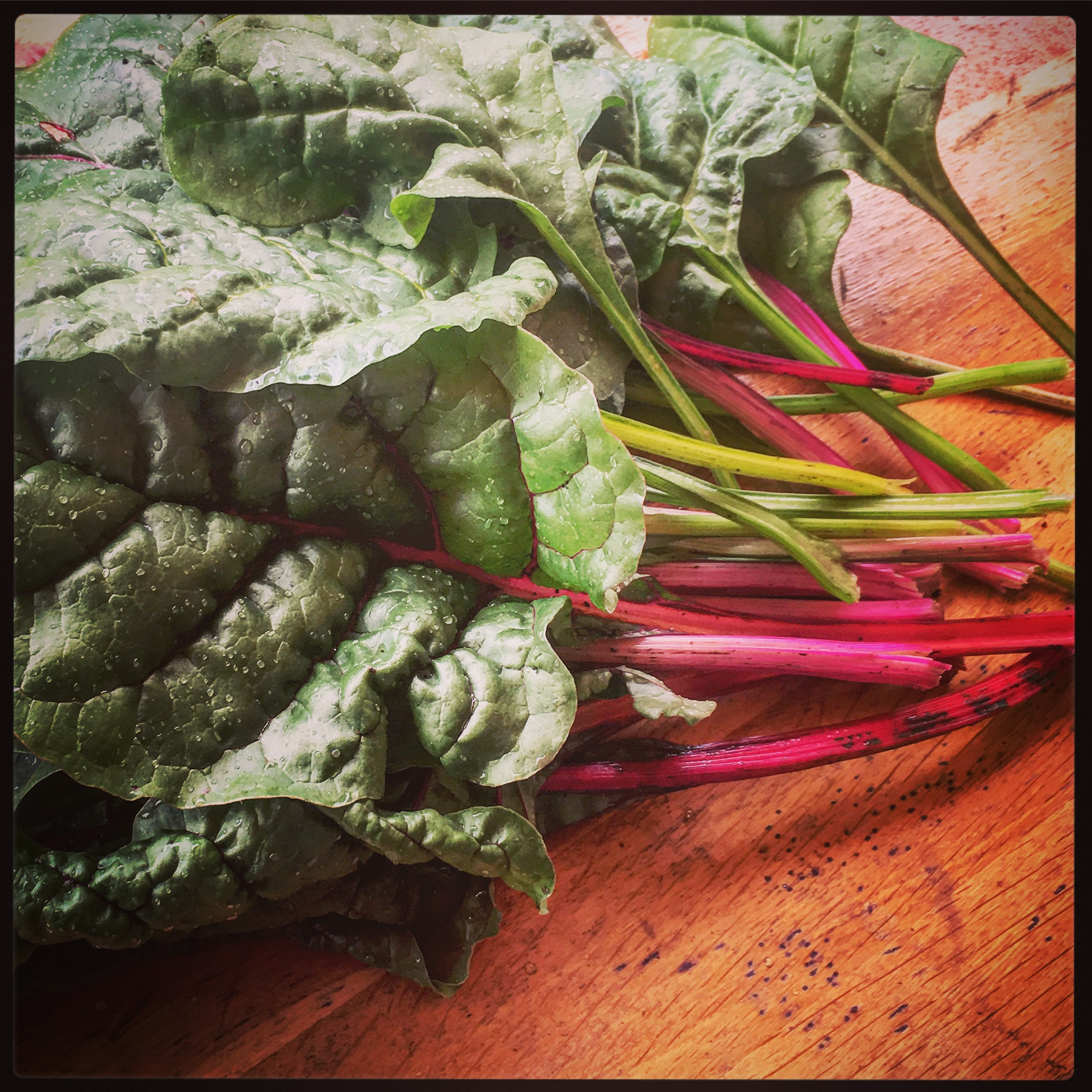 Swiss chard, grown in France obv.