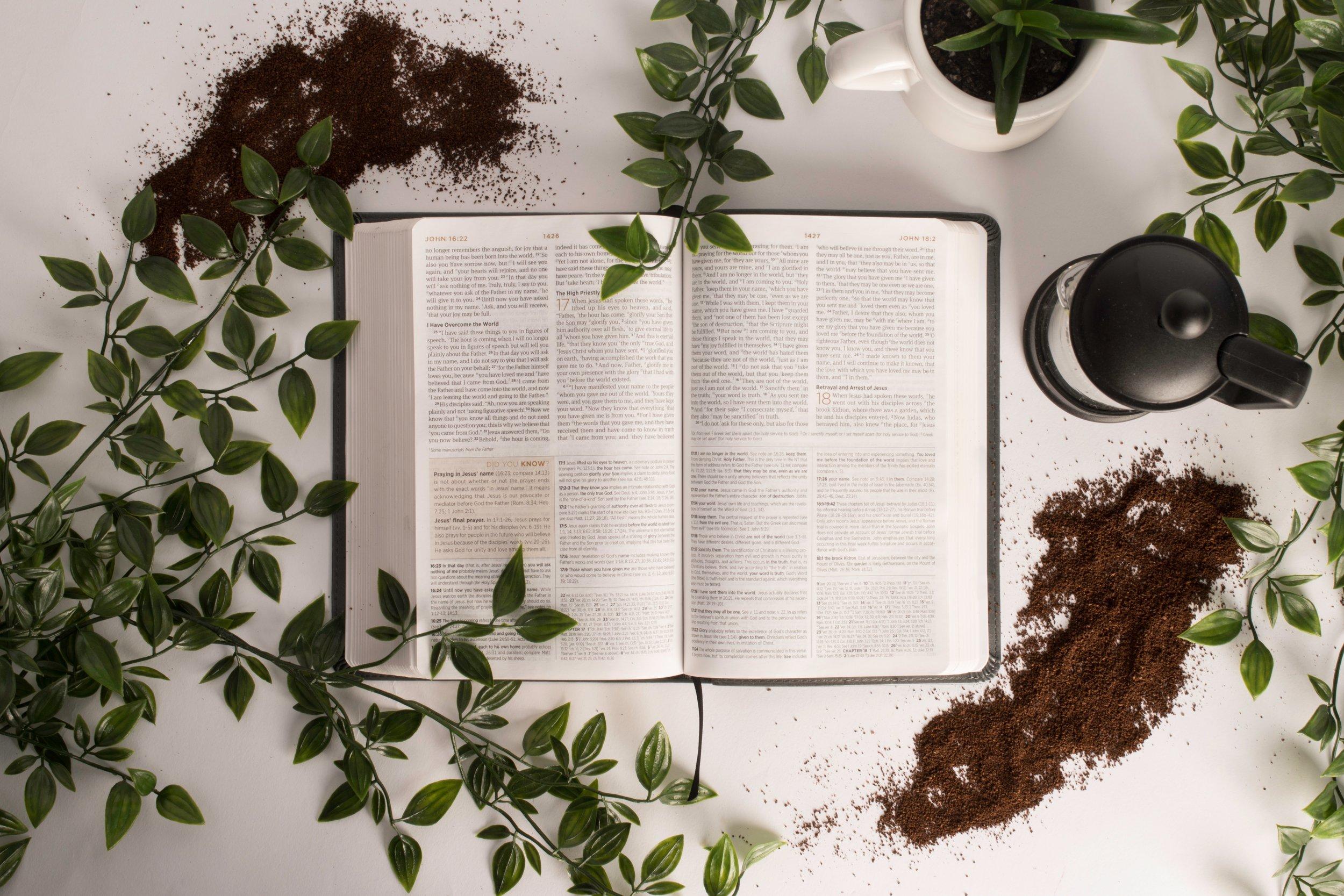 2019 BIBLE PLAN -