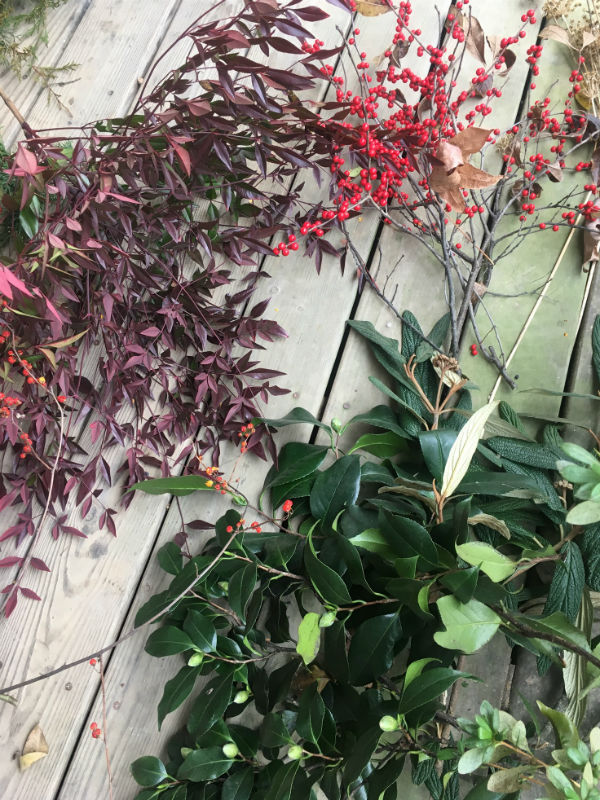 three foliage.jpg