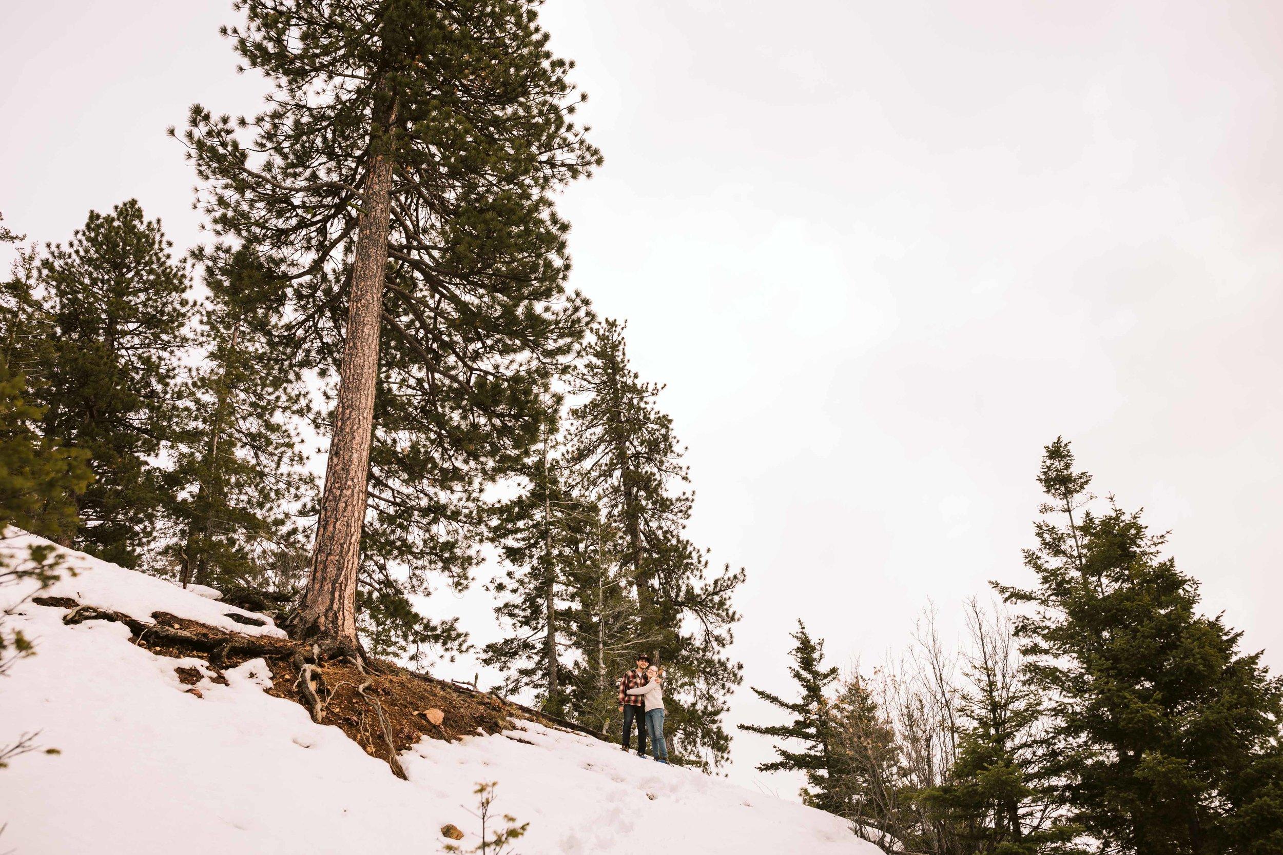 Snowshoeing in Blewett Pass
