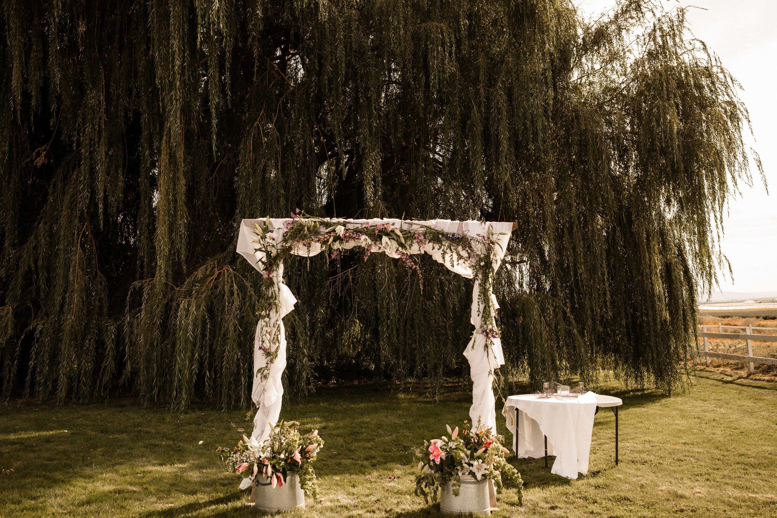 pasco-wedding-photos-6.jpg