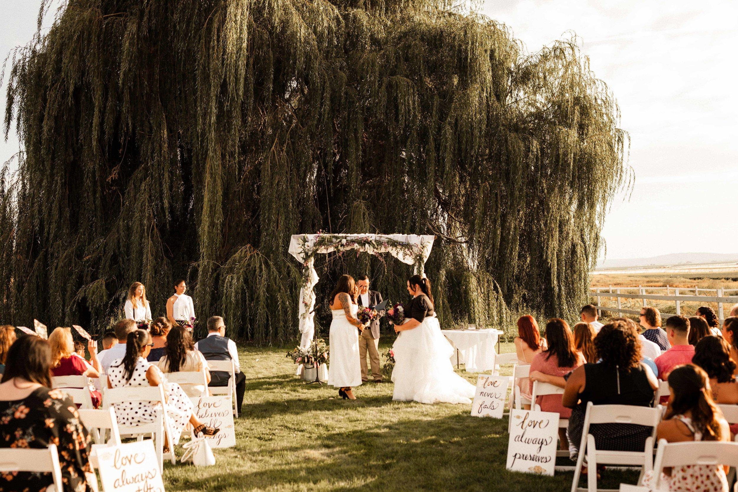 pasco-wedding-photos-14.jpg
