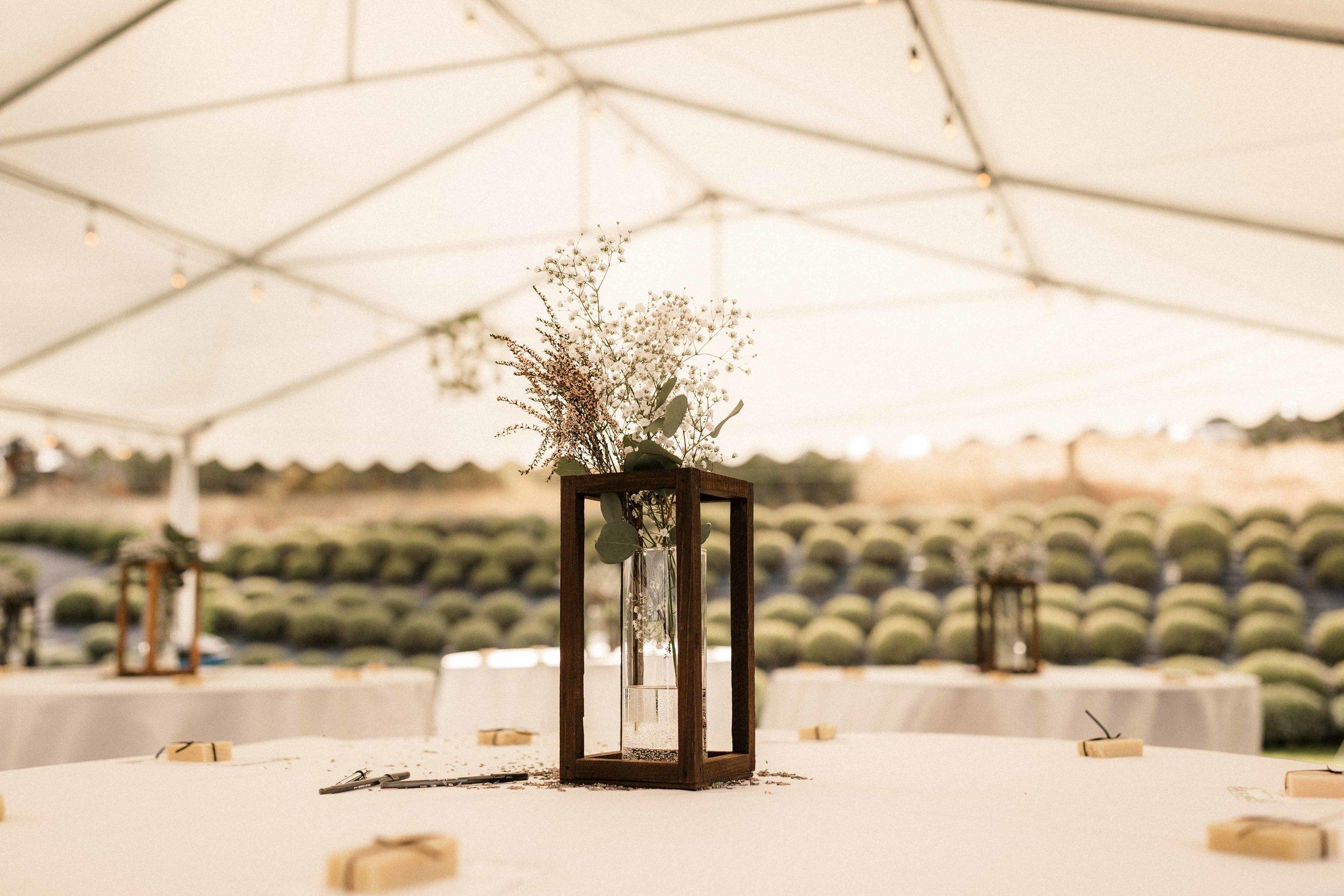 lavender-manor-wedding-41.jpg