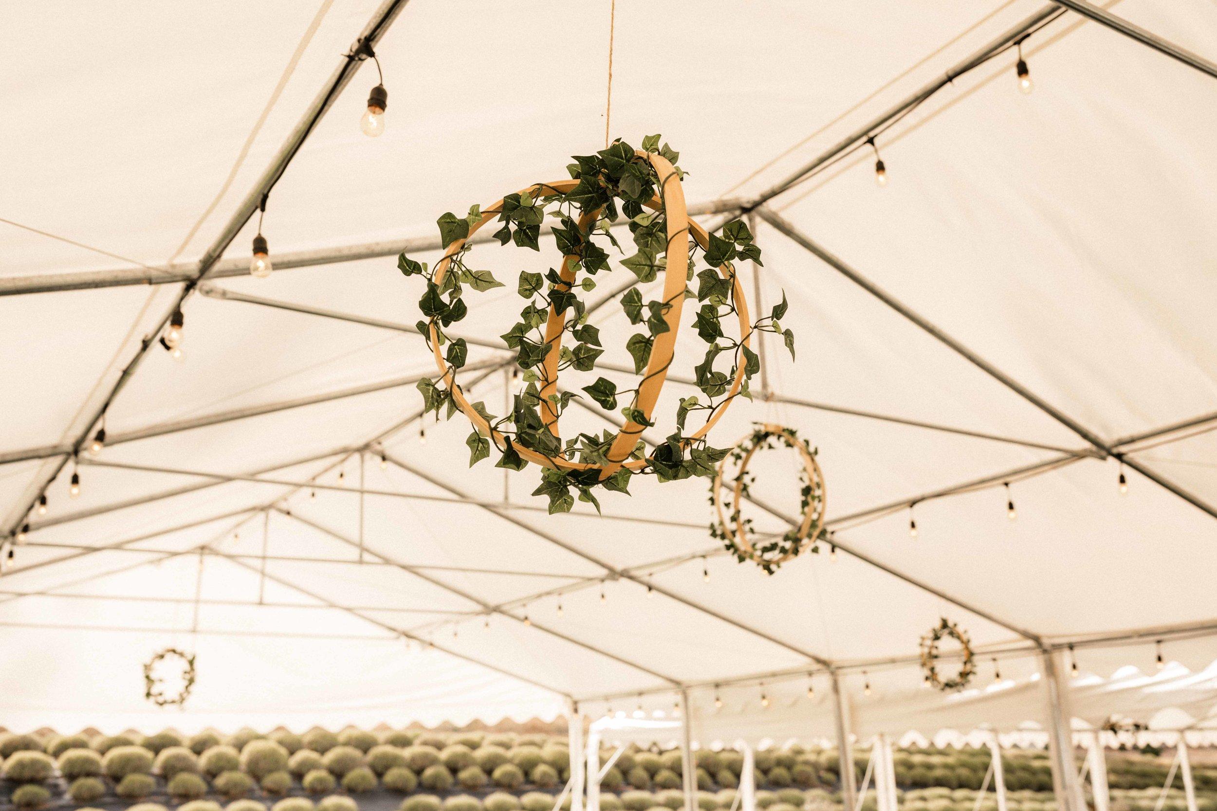 lavender-manor-wedding-49.jpg