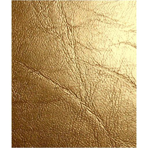 Gold YouTube Logo