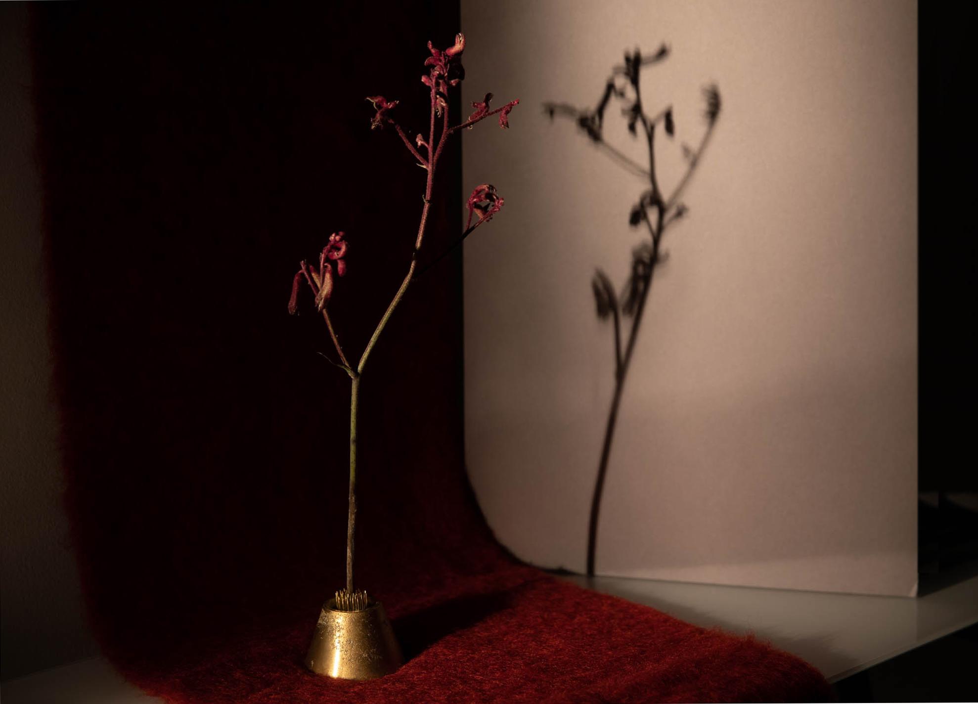 MERCURY BUREAU /  Bronze Candle Holder -  UNIFORME /  Mohair Muffler in Terra Rossa