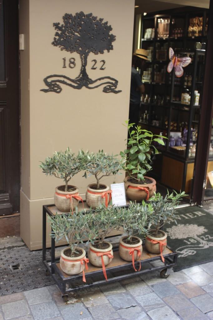 rue meynadier cannes france 55