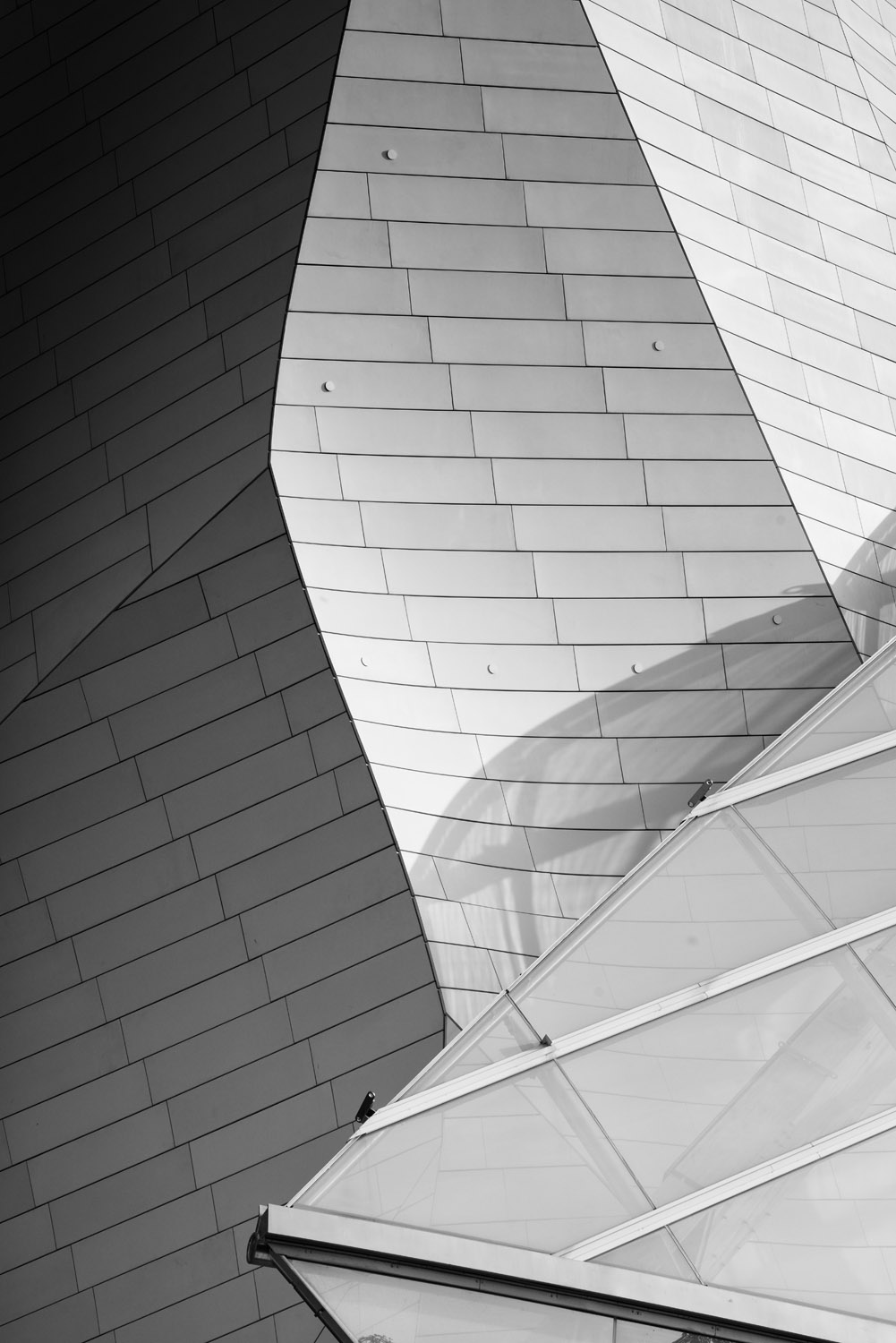 Fondation Louis Vuitton - Photo by Joas Souza