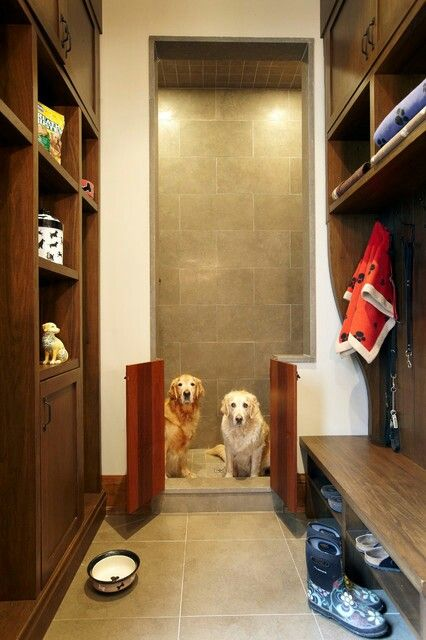 dogmudroom2.jpg