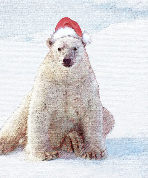 Santa+Polar+Bear_LoRes.jpg