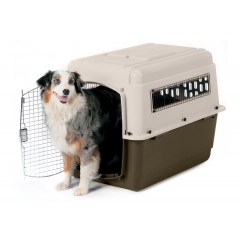 dog and kennel.jpg