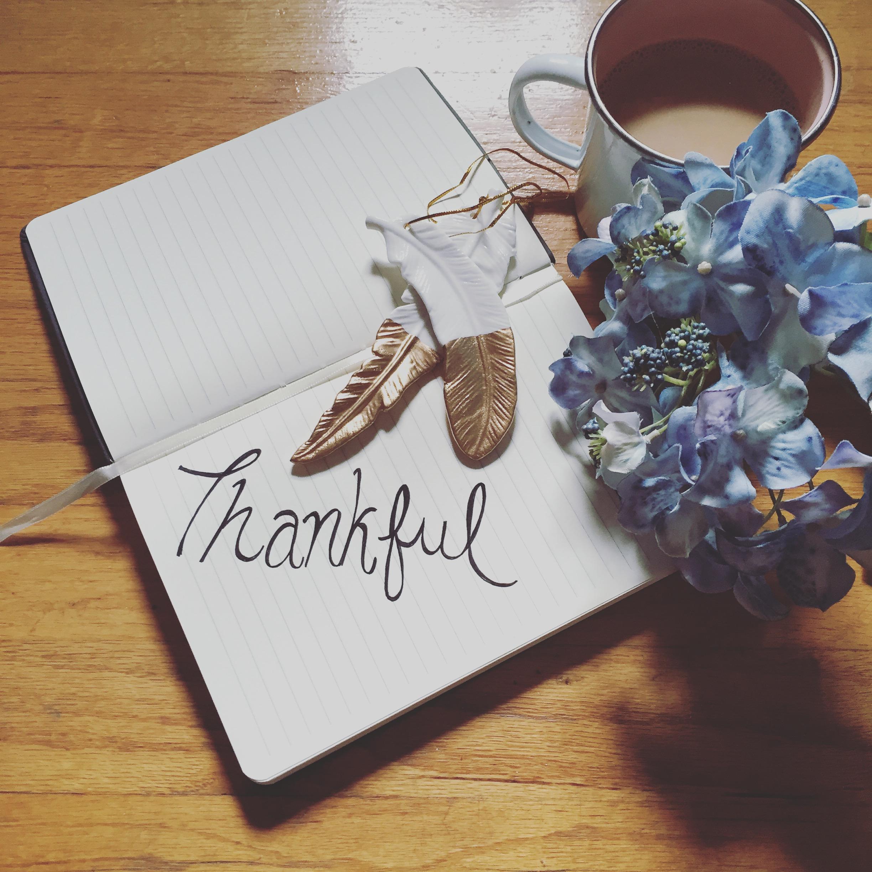 blue bells & thanksgiving