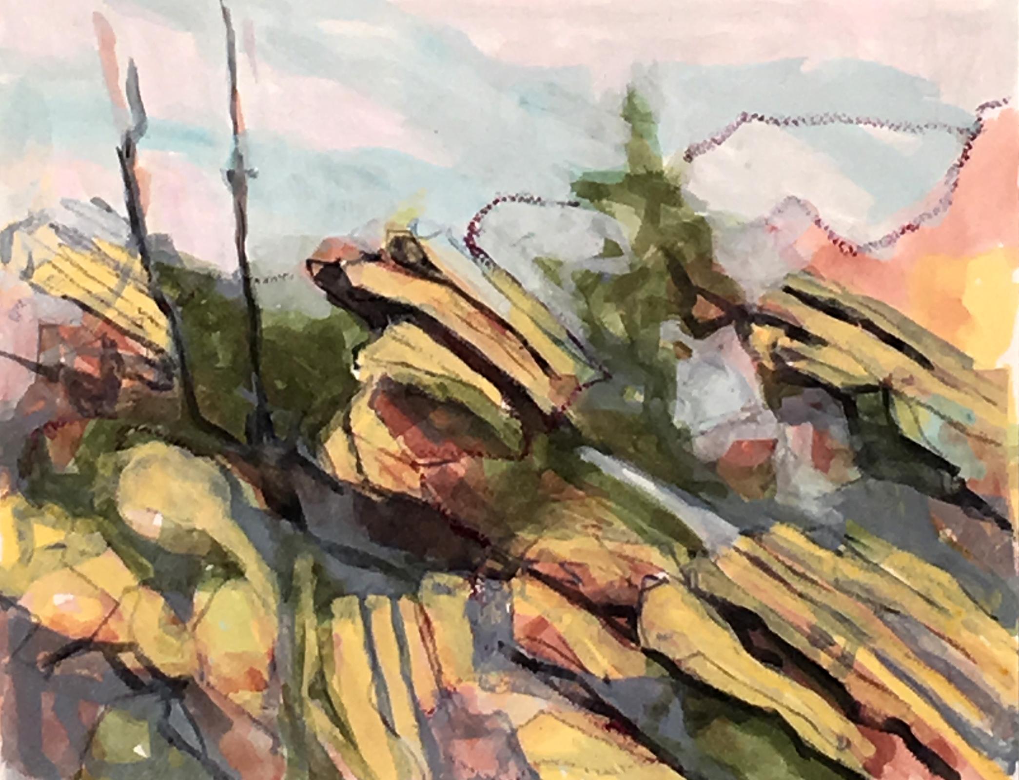 Rebecca Schultz.Brush Creek Ranch Color Sketch 2.jpg